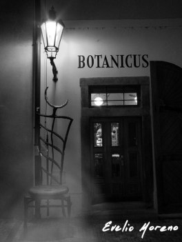 botanicus_con-niebla