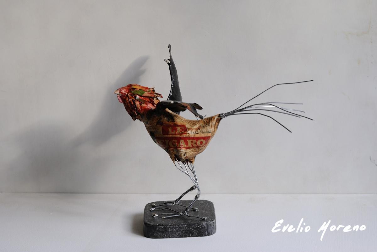 gallo_figaro_2